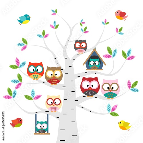 Canvas Prints Owls cartoon Vector set of colorful owls and birds on the tree on a white background