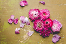 Flowers Laid Flat On Table