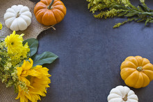 Mini Pumpkins & Flowers Background