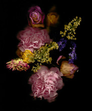 Flowers In A Black Background