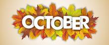 Autumn Foliage October Header