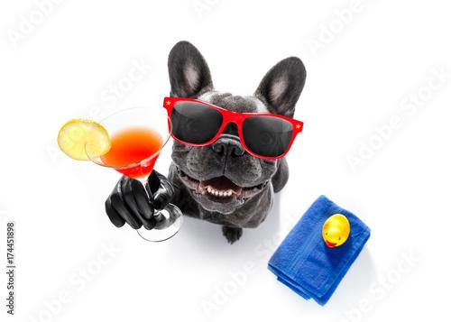Foto auf Leinwand Crazy dog drunk dog drinking a cocktail