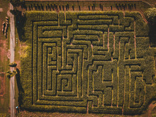Aerial Of Corn Maze Farm