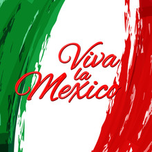 Viva La Mexico Against The Background Of The National Flag Of Mexico