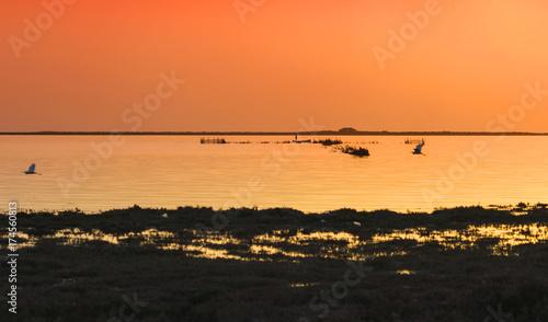 Papiers peints Orange eclat Magic sunset in Djerba, Medenine, Tunisia, North africa.