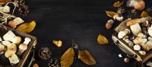 Tray With Autumn Mushrooms