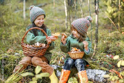Fotografie, Obraz  Gathering of mushrooms.