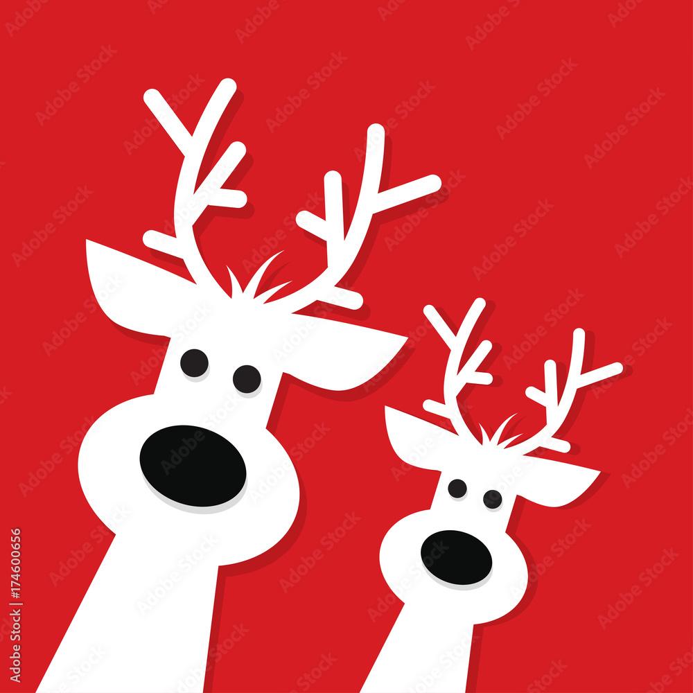 Fototapeta Two white Christmas Reindeer