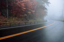 Asphalt Wet Road Curve On The ...