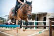 horse jumping obstacles during equestrian school training