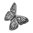 Butterfly with colorful wings. Insect butterfly single icon in monochrome style vector symbol stock isometric illustration web.
