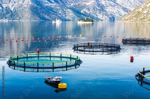 Photo Montenegro