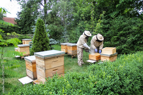 Beekeeper at work on his apiary with smoker next to the beehive Canvas Print