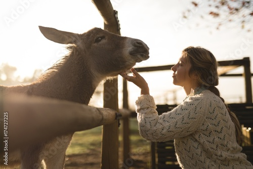 Woman stroking foal while standing by wooden fence
