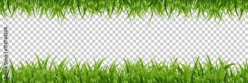 Fototapeta Vector realistic isolated green grass borders for decoration and covering on the transparent background. obraz