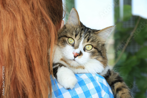 Woman holding fluffy cat. Adoption concept Canvas Print