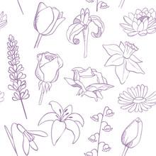 Flowers Sketch Seamless Vector...