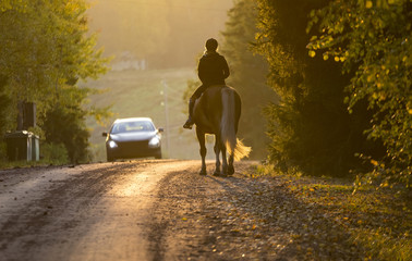 Woman horseback riding on the road in the sunset