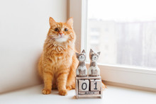 Cute Ginger Cat Siting Near Wooden Calendar With Cats And Date March 1st. International Day Of Cats.