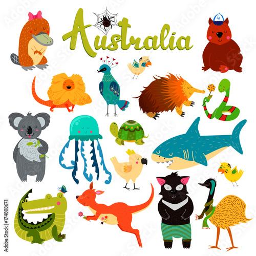 Poster de jardin Zoo Cute animals collection, baby animals. Australian animals. Spider, parrot, wombat, lizard, jellyfish, shark, crocodile, koala, kangaroo, platypus, turtle, tasmanian devil, snake, birds.