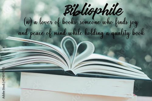 Bibliophile wording with meaning on books background with heart shape in the gar Wallpaper Mural