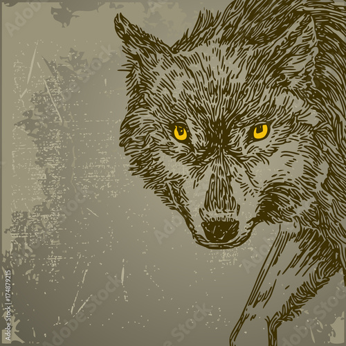 Photo Stands Hand drawn Sketch of animals Beautiful background with wolf. Vintage style. Vector illustration.
