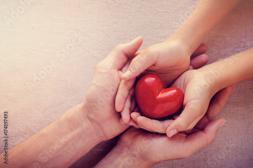 adult and child hands holiding red heart, health care love, give, hope and famil Canvas Print