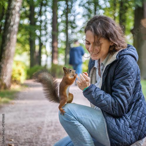 Zdjęcie XXL Piękna młoda kobieta karmi wiewiórki w jesień parku, wiewiórczy obsiadanie na dziewczynie