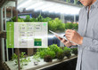 canvas print picture - smart agriculture in futuristic concept, farmer use technology to monitor, control and adjustment led, atmosphere,humidity, water level and keep tracking harvesting time in vertical or indoor farming