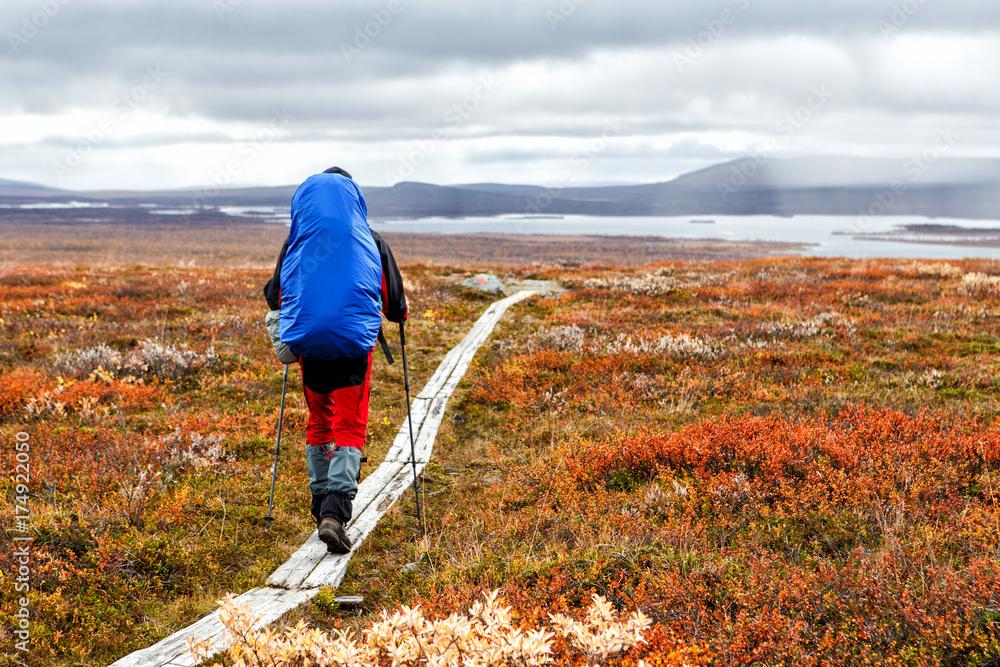 Fototapety, obrazy: Wanderer im Herbst auf dem Kungsleden