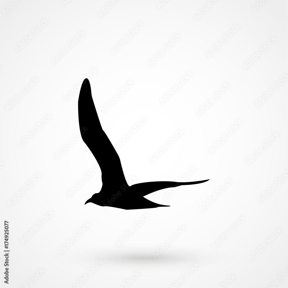 Valokuva  Flying Seagull Bird black silhouette isolated on white background