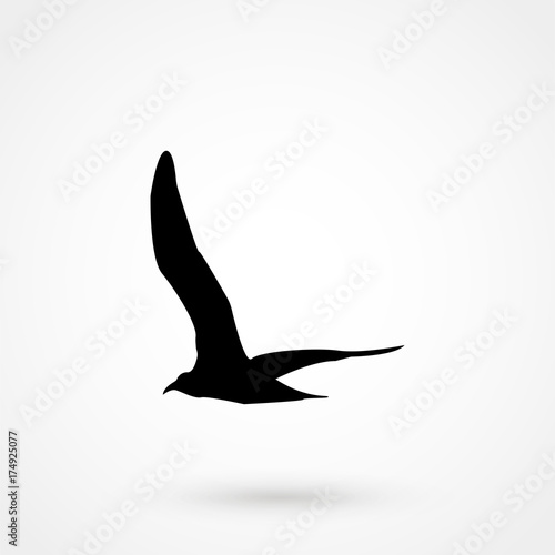 Flying Seagull Bird black silhouette isolated on white background Slika na platnu