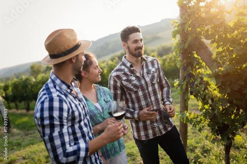 Wall Murals Vineyard Wine grower and people in vineyard