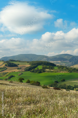 Keuken foto achterwand Olijf Landscape on a day of september, cultivated fields and blue sky with clouds