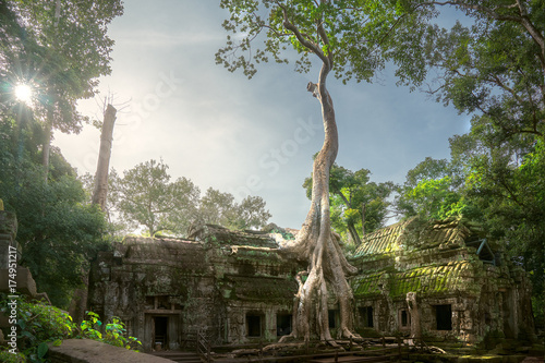 Spoed Foto op Canvas Temple Ta prohm temple
