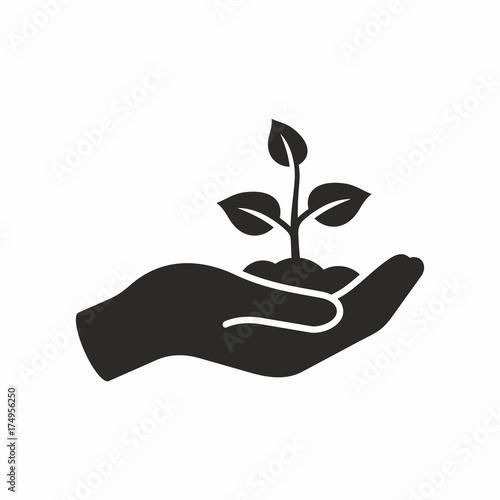 Valokuva Plant in hand. Vector icon.
