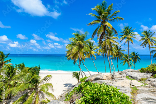 Explore The Beauty Of Caribbean: Paradise Beach On The Caribbean