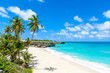 canvas print picture - Bottom Bay, Barbados - Paradise beach on the Caribbean island of Barbados. Tropical coast with palms hanging over turquoise sea. Panoramic photo of beautiful landscape.