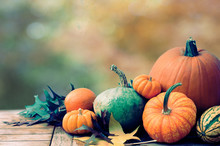 Fall Thanksgiving Harvest Of P...
