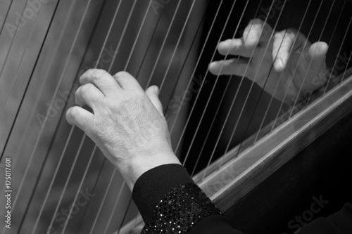 Fotomural Hands of a woman on harp strings closeup in black and white tones