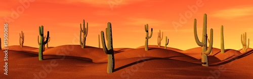 Stickers pour porte Orange eclat American Desert, cacti in the sand