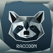Origami Raccoon Head