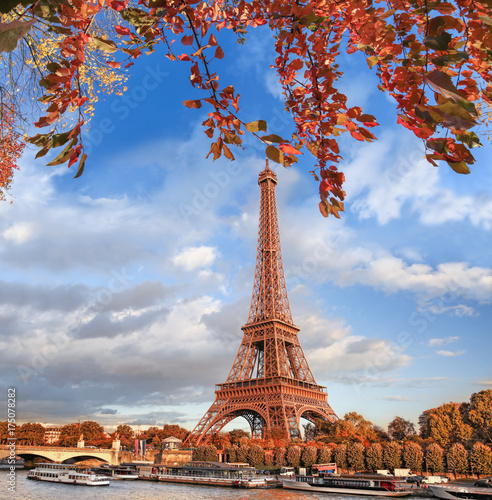 Eiffel Tower with autumn leaves in Paris, France Wallpaper Mural