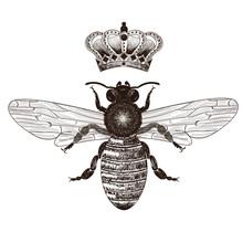Bee And Crown Set - Drawings