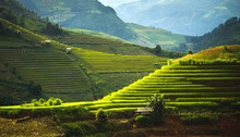World Heritage Ifugao Rice Ter...