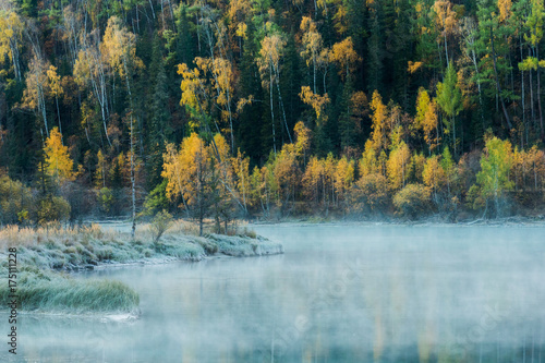 Fototapety, obrazy: Snow grass and river mist in cold autumn time, Wolong bay Kanas lake, Xinjiang, China.