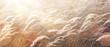 Leinwanddruck Bild - sunny autumn Nature background; abstract October landscape