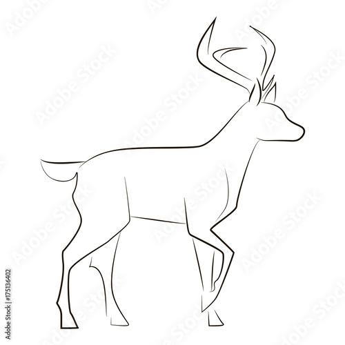 Valokuva  Standing black line deer on white background
