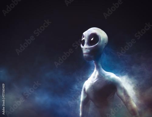 Photo sur Toile UFO Alien on a smoky background / 3D illustration