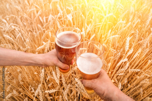 Tuinposter Bier / Cider A glass of beer in a hand in a wheat field